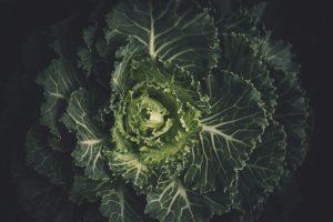 zielone warzywa na choroby kobiet